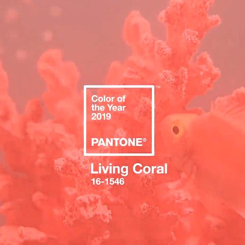 צבע השנה 2019 של Pantone